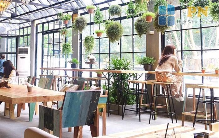 phim cách nhiệt tạo không gian thoải mái cho khách trong quán cà phê