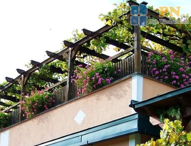 trồng cây giúp là cách chống nóng sân thượng