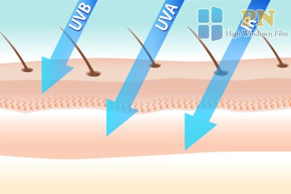 Ngoài tia UVA, UVB gây hại cho da thì tia hồng ngoại IR cũng ảnh hưởng đến da
